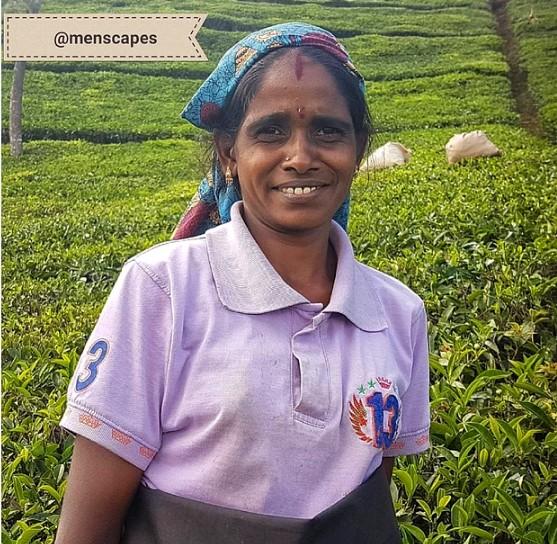 Günde 30 kilo çay toplayıp çuvalları kilometrelerce taşımak zorunda kalan kadın...