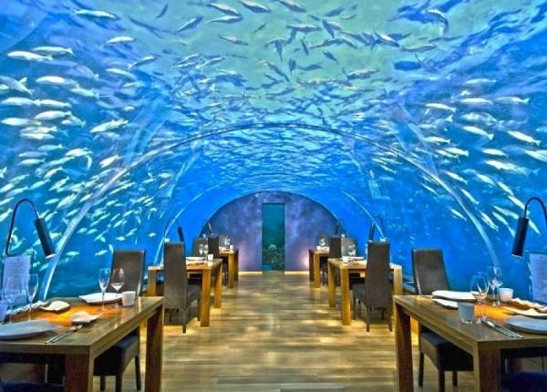 2. Ithaa Undersea, Maldivler
