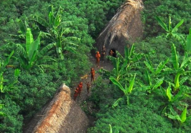 4. Vale do Javari Reservation, Brezilya