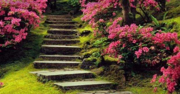 Her biri adeta cennetten bir parça gibi 8 botanik park...