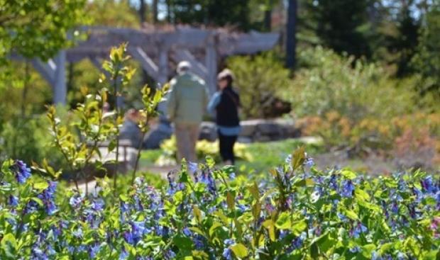 7. Coastal Maine Botanik Bahçesi, ABD