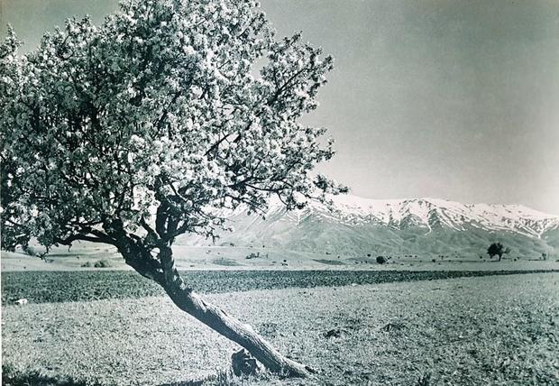 Malatya'da sonbahar ve kış mevsimi bir arada