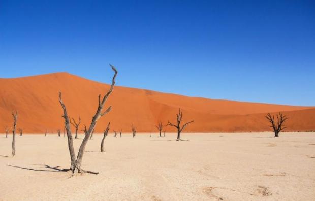 15. Sossusvlei, Namibya