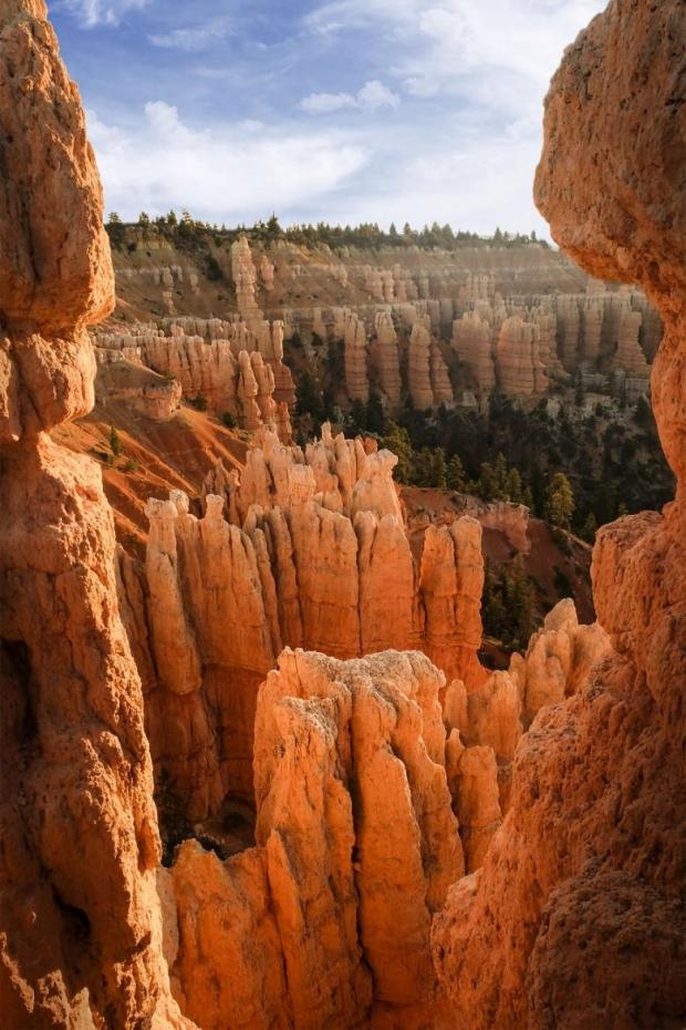 28. Bryce Kanyonu, Amerika
