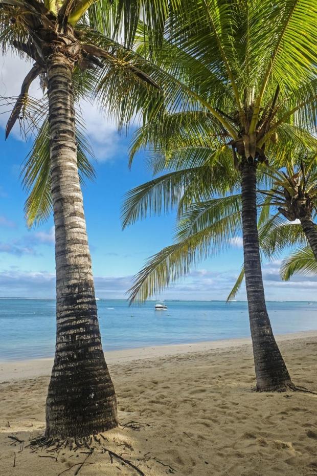 31. Le Morne, Mauritius