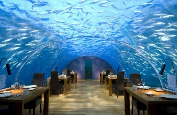 Ithaa Undersea Restaurant, Alif Dhaal Atoll, Maldivler