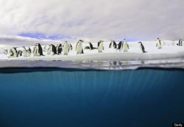 5. Antarktika