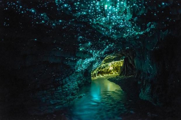 Glowworm Mağaraları – Yeni Zelanda