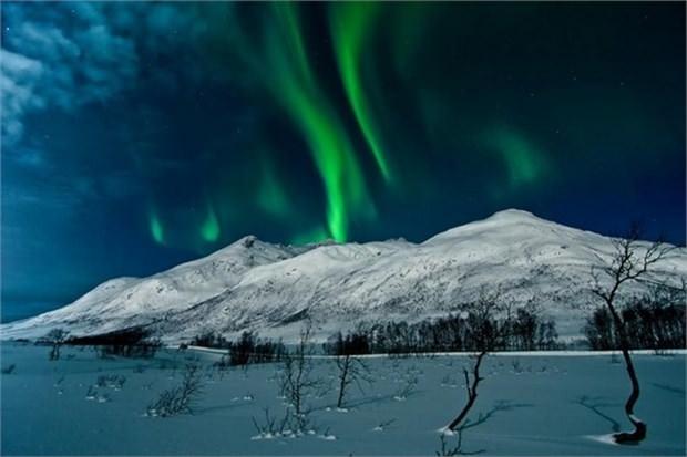 14. Kuzey Işıkları altında kamp yapmak (Norveç)