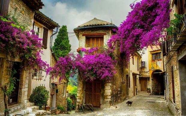 1. Provence, Fransa