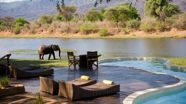 8. Bu görmüş olduğunuz harika butik otel Zambiya'da. Safari hayatı size güzel geliyorsa, vahşi yaşamla iç içe bir tatil geçirmek istiyorsanız Chongwe
