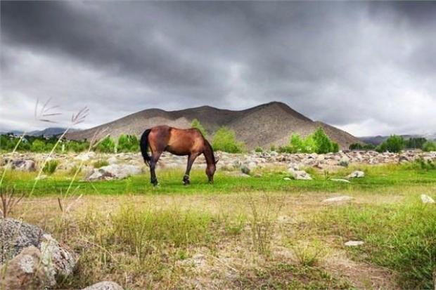 1- Moğolistan